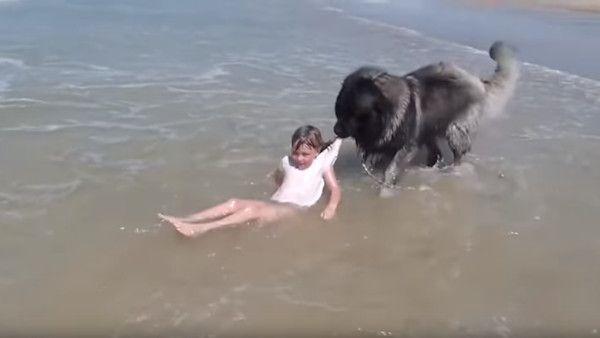 Dziewczynka fale pies