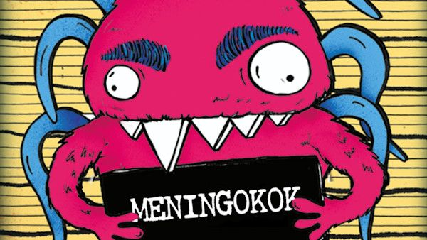 Rysopis meningokoka