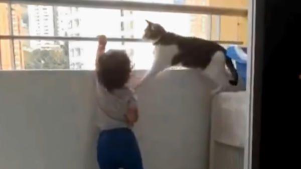 Kot dziecko balkon barierka