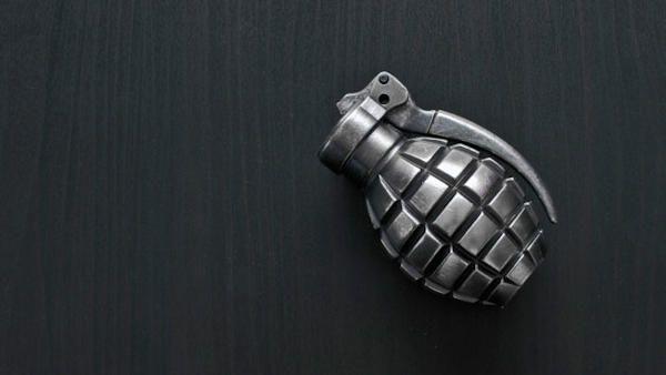 Przyniosl ze spaceru granat