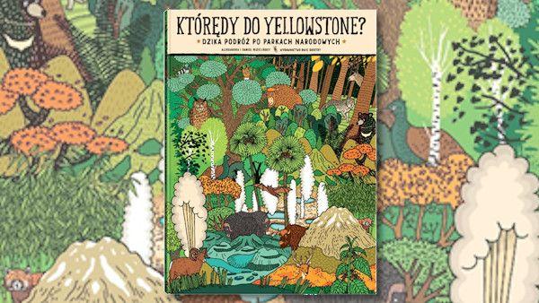 Ktoredy do yellowstone