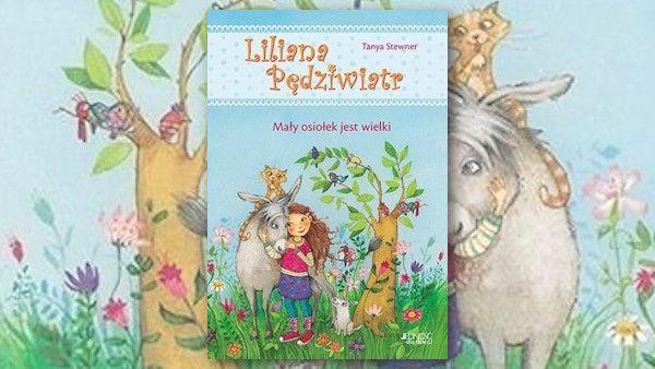 Liliana pedziwiatr maly osiolek jest wielki