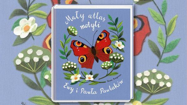 Maly atlas motyli